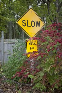Slow Watch for Children