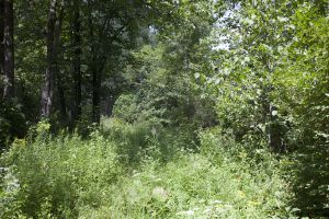 Waushara County Public Land