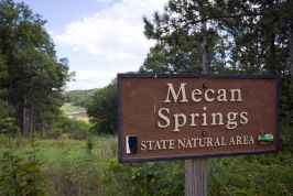 Mecan Springs and Ice Age Trail Pictures