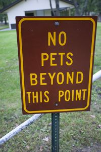No Pets Beyond This Point